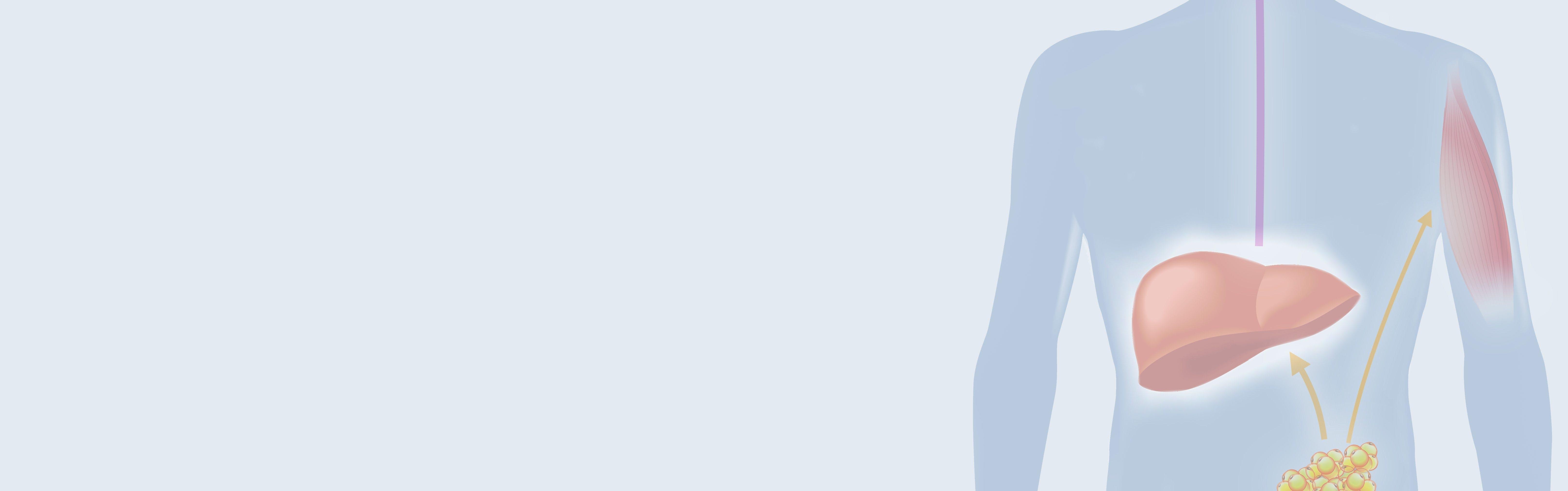 ¿Qué es la cetosis?