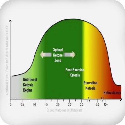 Optimal ketosis