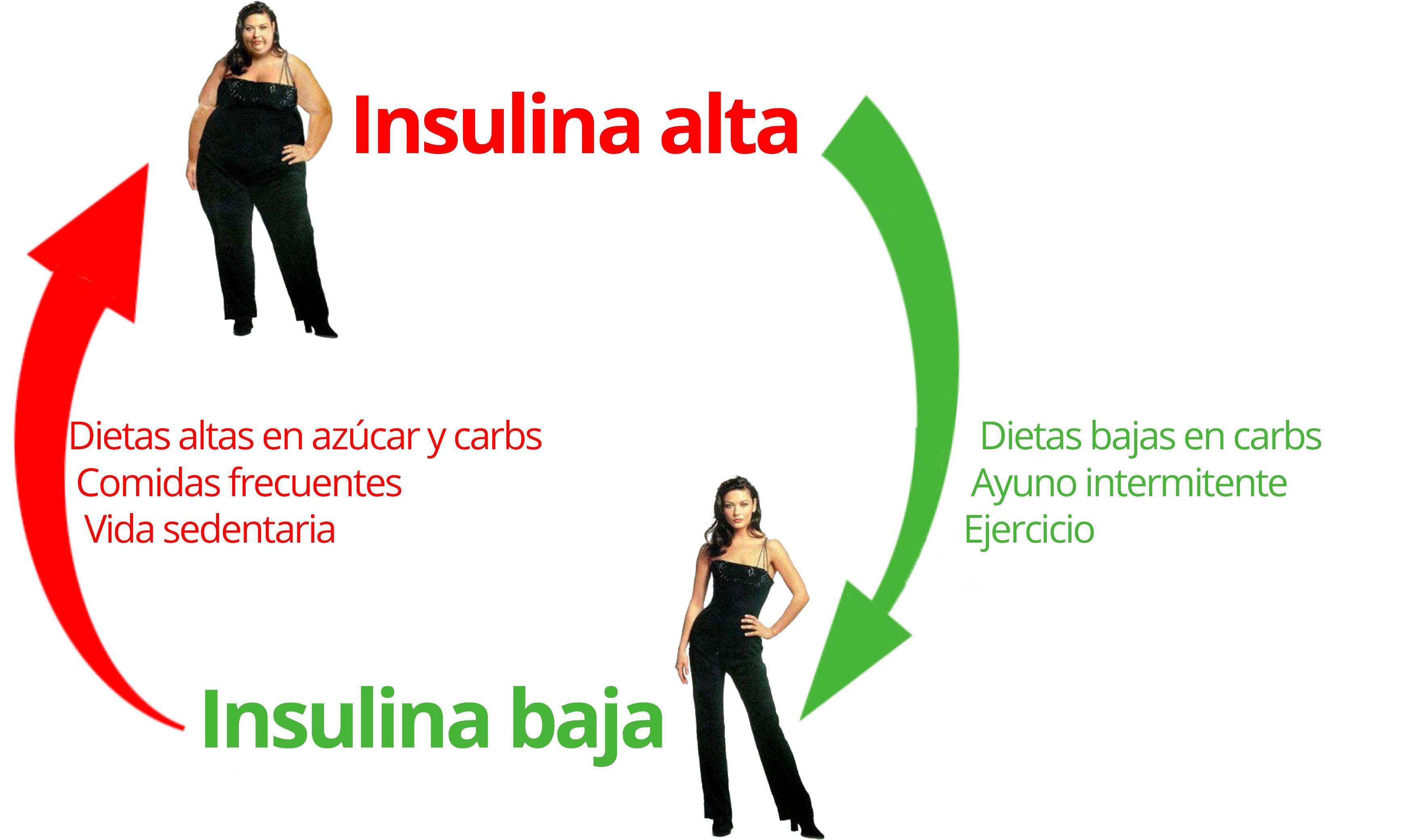 dieta baja en carbohidratos para que sirve