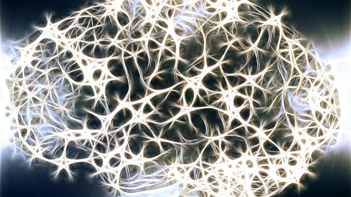 Revisión de dietas cetogénicas para trastornos psiquiátricos
