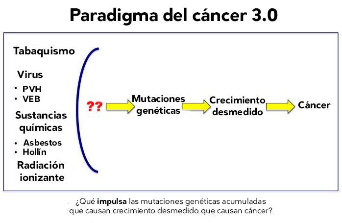 CancerParadigm3