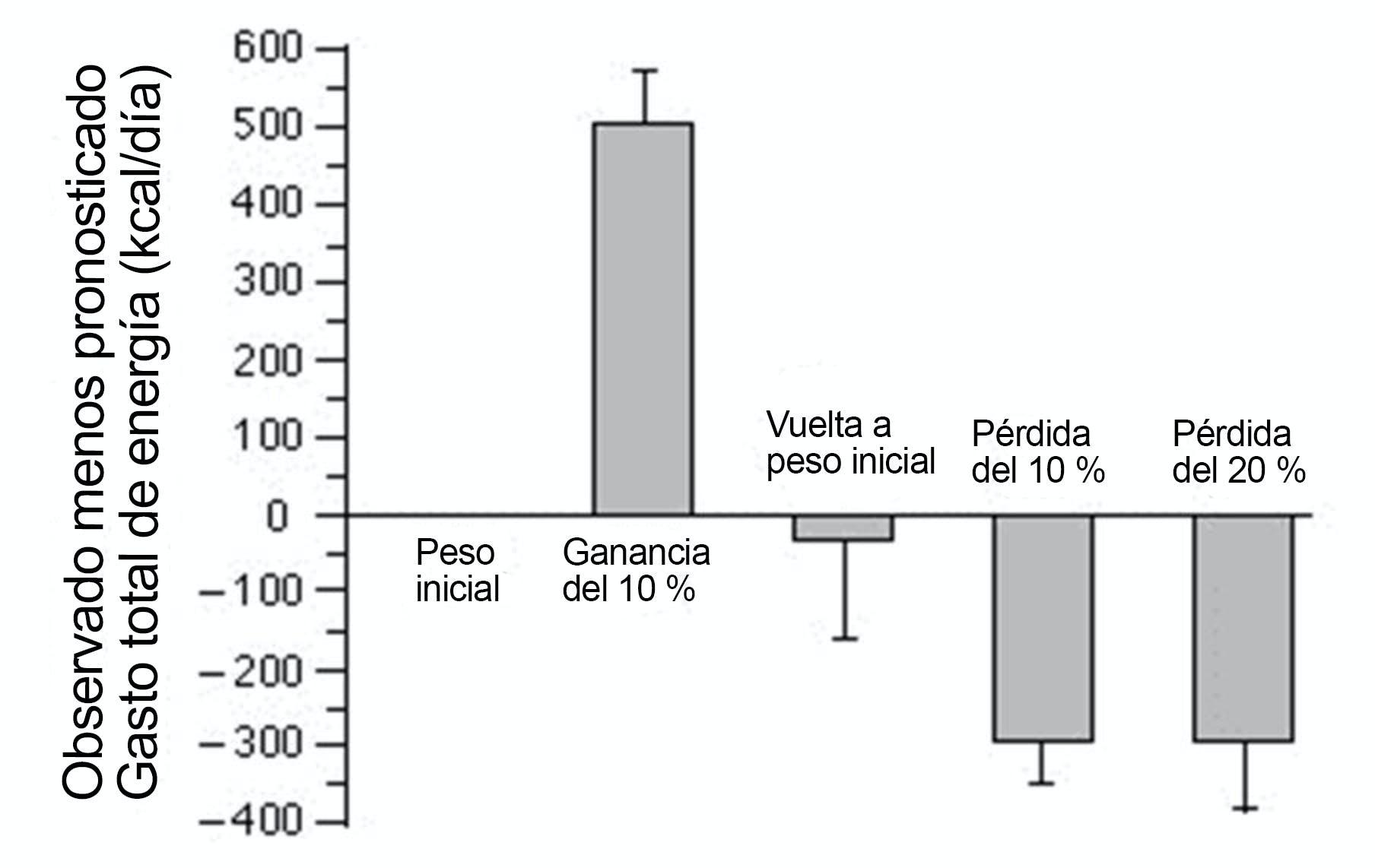 Gráfica de gasto de energía