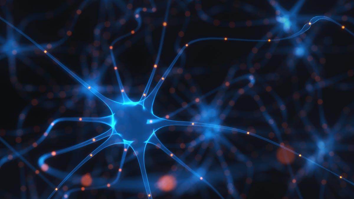 Nueva guía: ¿puede una dieta cetogénica ayudar con el TDAH, autismo y más?
