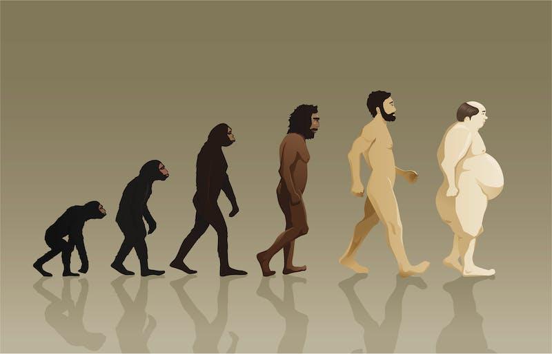 Evolución hacia obesidad