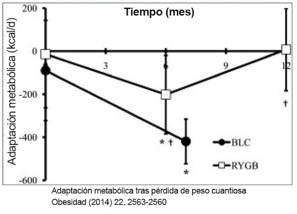 Adaptación metabólica