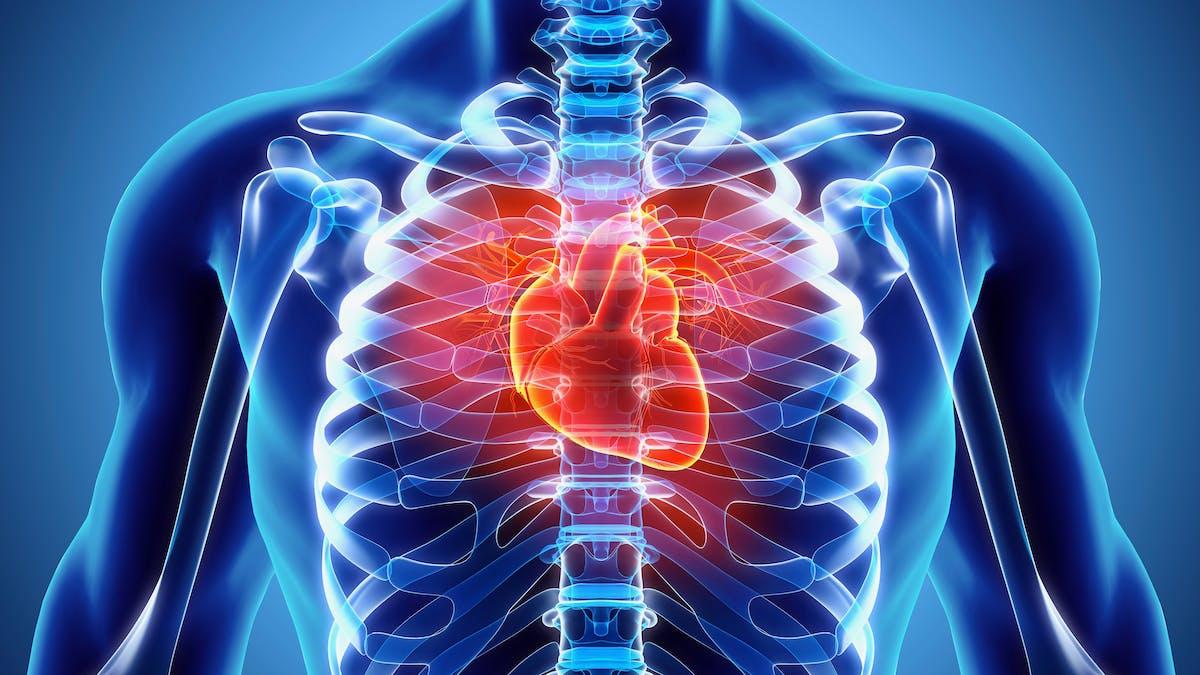 Control del colesterol en sangre: ahora es personal