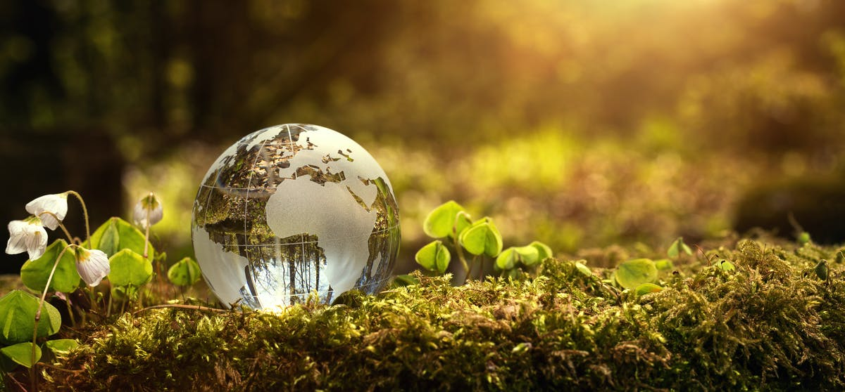Conservación medioambiental