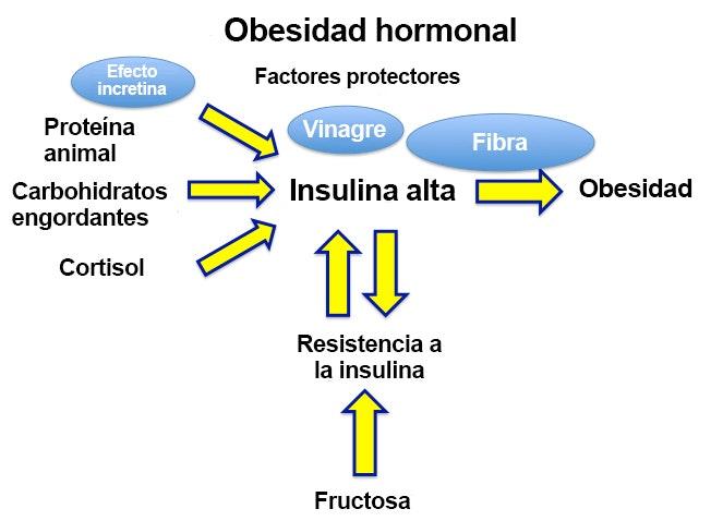 Insulina para bajar de peso