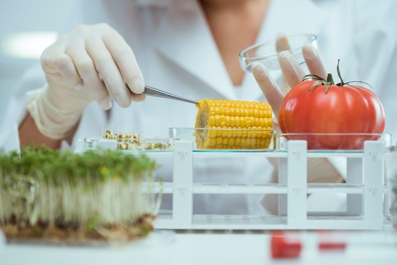 alimentos en laboratorio