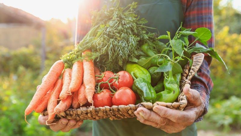 Hombre sosteniendo verduras en una cesta