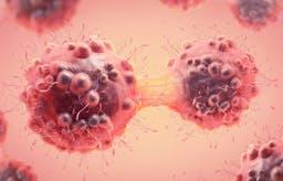 Investigadores de EE. UU. estudian la relación entre el azúcar, la insulina, keto y el cáncer
