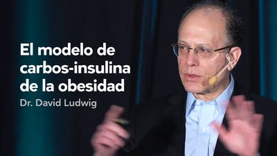 El modelo de carbos-insulina de la obesidad — Dr. David Ludwig