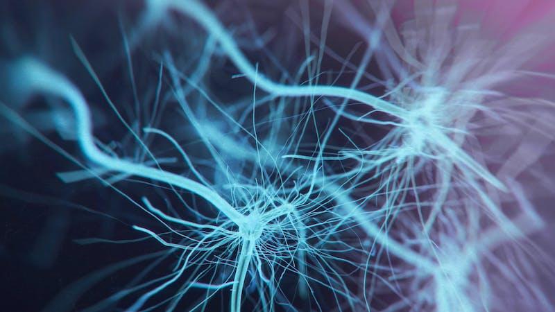 Sistema de células neuronales