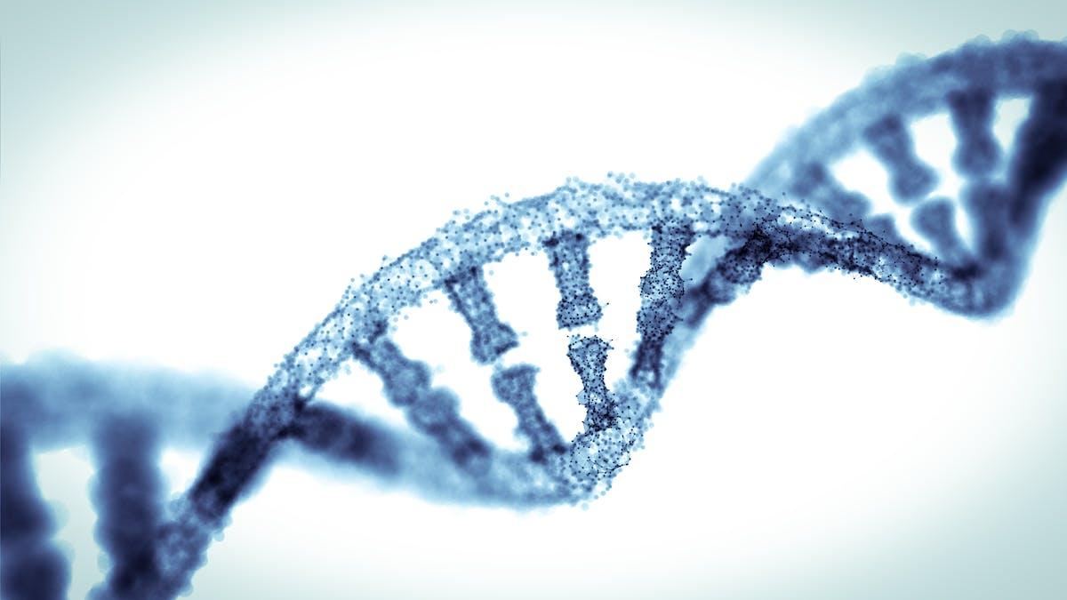 Un gen nos ayudó a adaptarnos a más carbos, pero el 50 % no lo tenemos