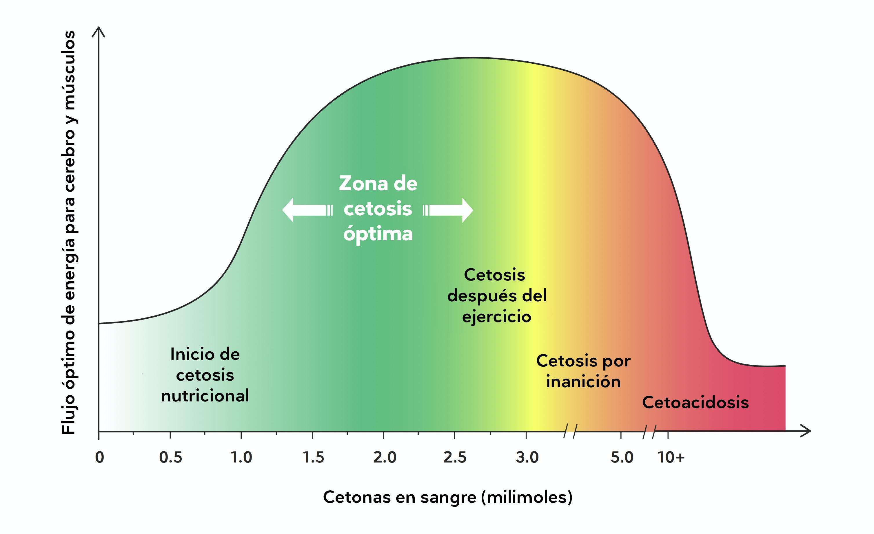 ?que es la dieta de la cetosis