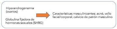 PCOSEtiology2