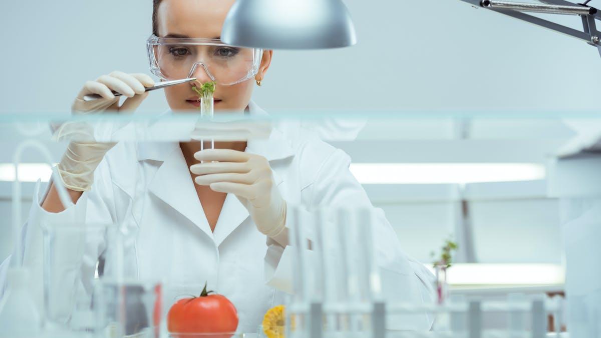 Artículo: El gobierno de EE. UU. no tiene interés en una nutrición óptima