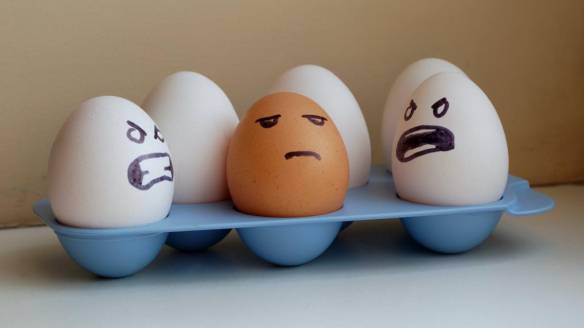 ¿Te has cansado de comer huevos?