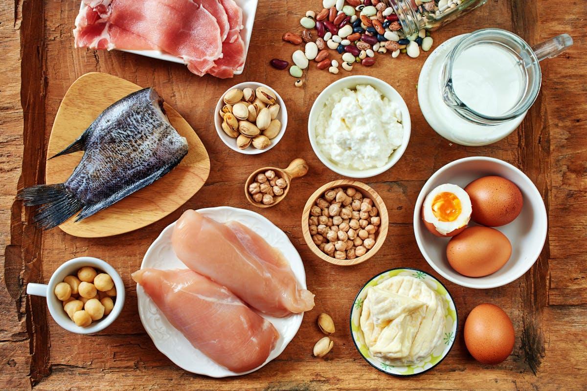 ¿Cuánta proteína debemos comer?: la evidencia