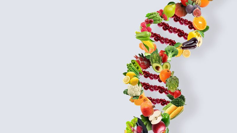 Nutrigenetics concept DNA strand made with healthy fresh vegetables and fruits