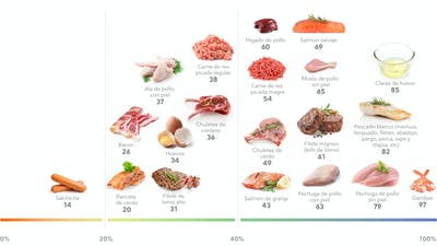 La mejor carne, marisco y huevos ricos en proteínas