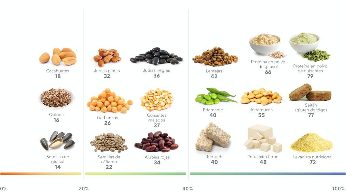 Los mejores alimentos de origen vegetal ricos en proteínas