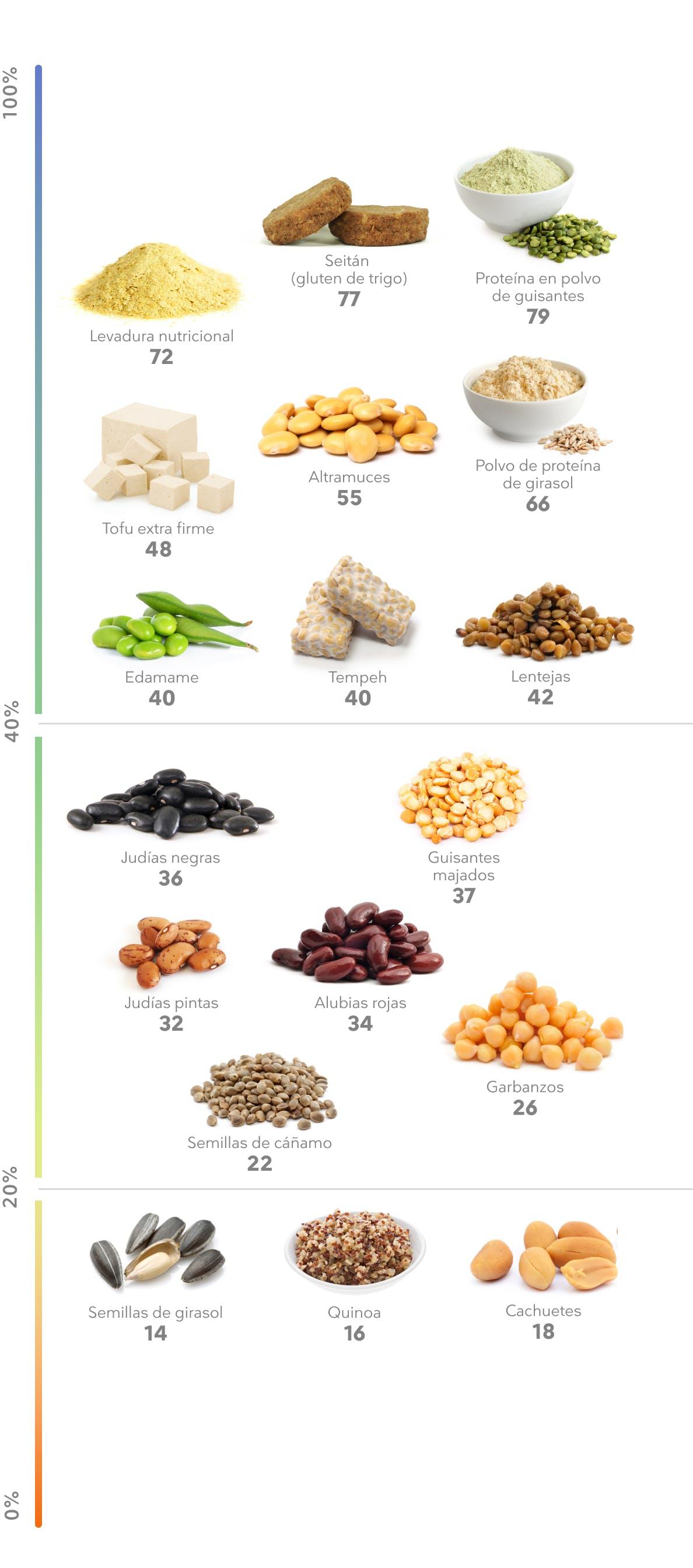 Fuentes de proteína de origen vegetal
