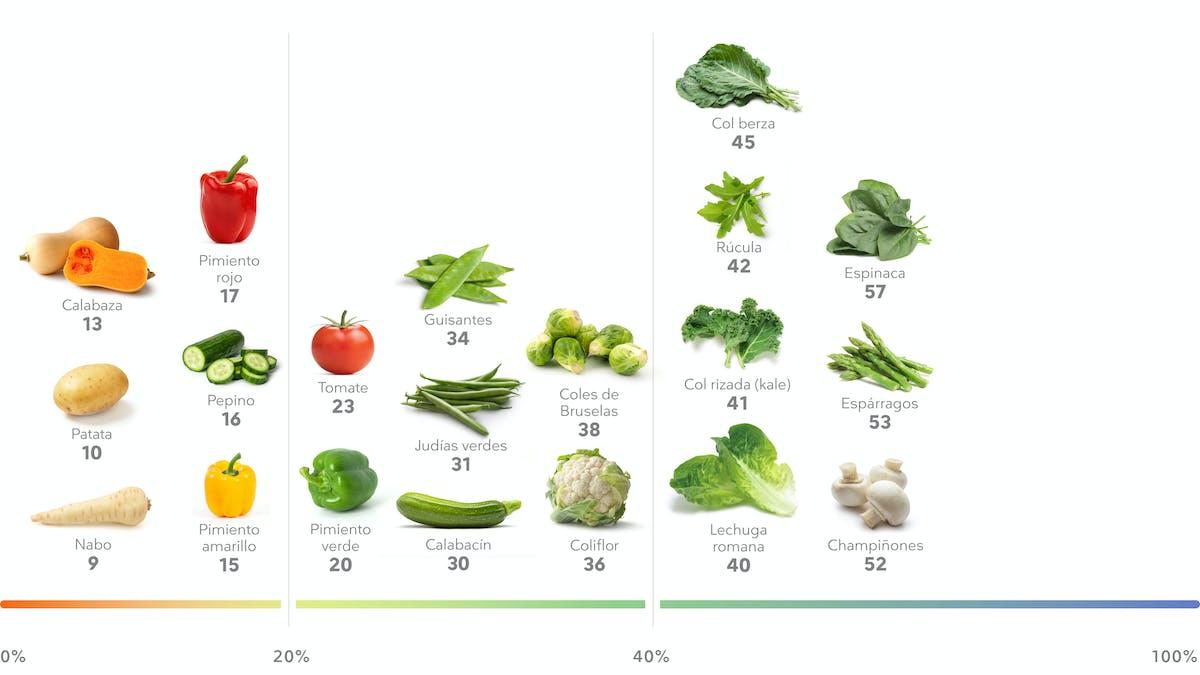 Las mejores verduras ricas en proteínas para perder peso