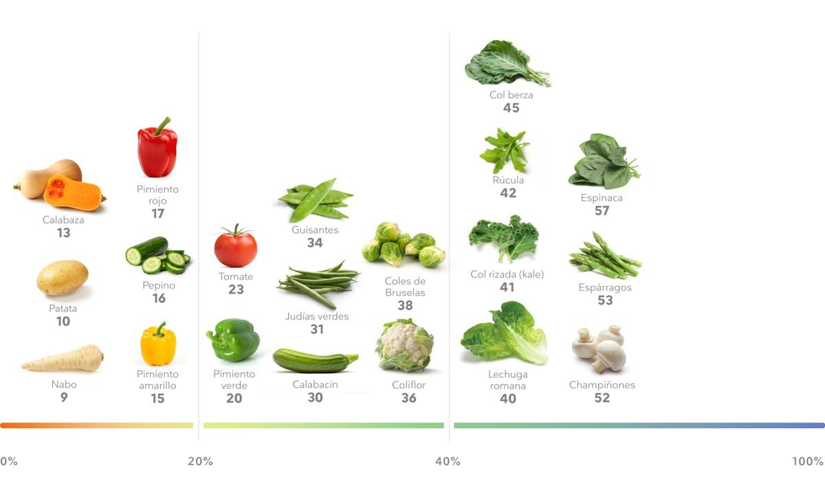 Porcentaje de proteína en verduras