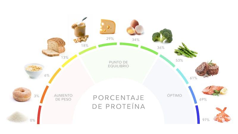 Porcentaje de proteína de alimentos populares