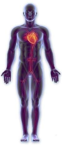 Blodtrycket är trycket i blodkärlen
