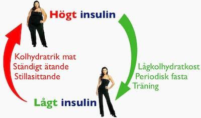 insulin-f9
