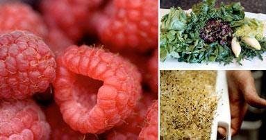 Sjuk av frukt och grönt