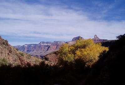 Bright Angel Trail