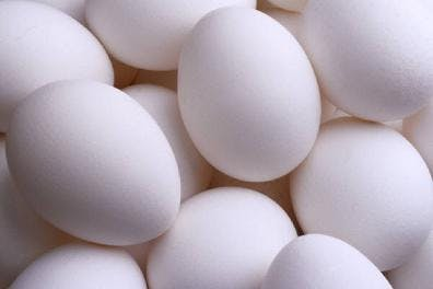 1 ägg om dagen är livsfarligt (?)