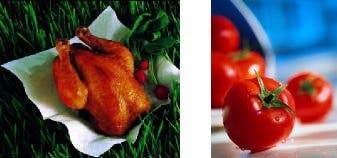 Kyckling och tomater