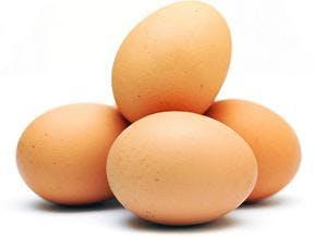 Ofarligt att äta ägg