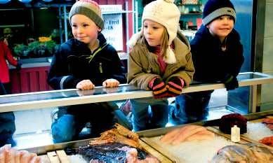 Fiskätare blir smartare