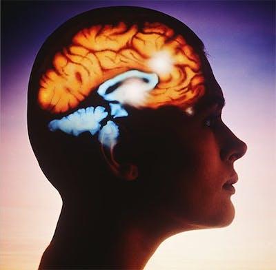 Omega 3 och hjärnan