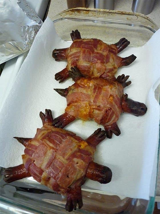 Bacon + Sköldpaddor = ?