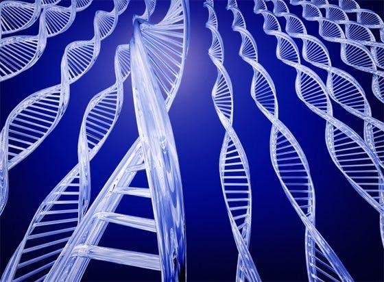 Dina gener är inte ditt öde