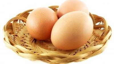 27 hårdkokta fakta om ägg