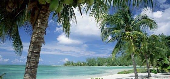 Planera för Low-Carb Cruise 6-13 maj 2012