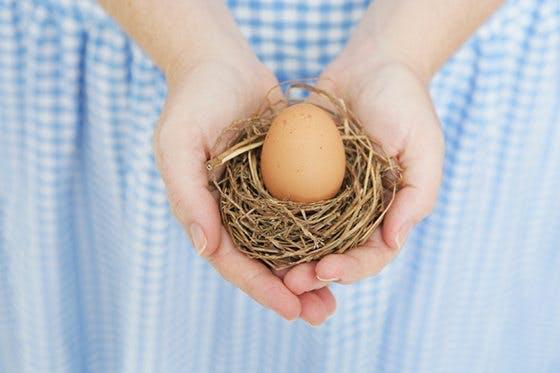 Vill du ha ultraljud med ägget?
