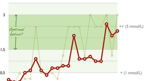 Experiment: Optimal ketos för viktminskning och prestationsökning