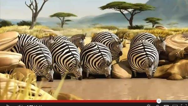 Vad skulle hända om vilda djur åt snabbmat?