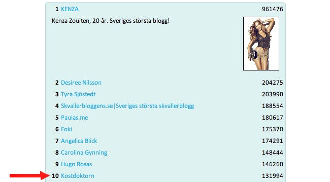 bloggtoppen (kopia)