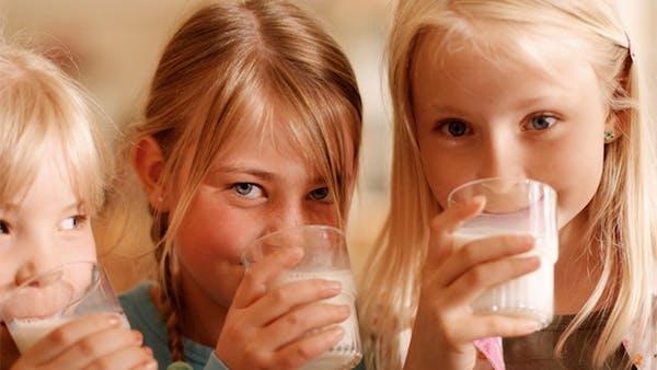 Smör och mellanmjölk tillbaka på fler skolor