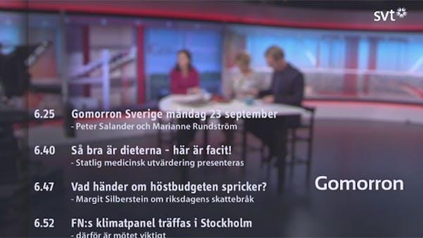 SBU-rapporten Mat vid fetma diskuteras på SVT kl 06:40