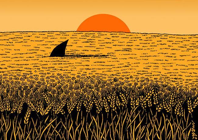 Ny studie: Är dagens vetebröd farligt för din hälsa?